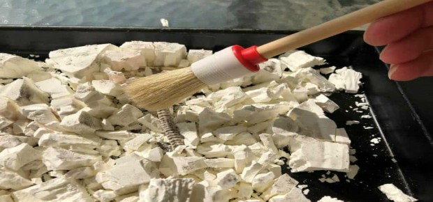 Excavate your own fossils