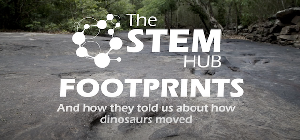 Foot prints and how they told us about how dinosaurs moved